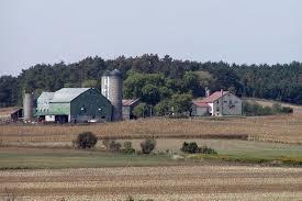 Farm gazdálkodás